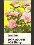 Pokojové rostliny - náhled
