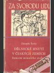 Dělnické hnutí v českých zemích koncem minulého století - náhled