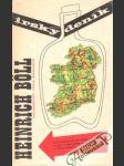 Irský deník - náhled