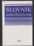Slovník amerikanismů - náhled