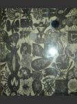 Černé muzeum - pieyre de mandiargues andré - náhled