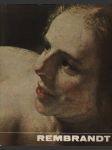 Rembrandt - náhled