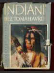 Indiáni bez tomahavků - náhled