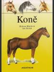 Koně - náhled