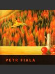 Petr Fiala - náhled