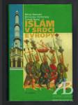 Islám v srdci Evropy - náhľad