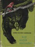 Kráľ sivých medveďov - náhled