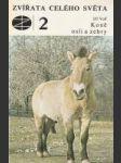 Zvířata celého světa 2 - Koně, osli a zebry - náhled
