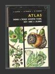 Atlas chorob a škůdců ovocných plodin, vinné révy a zeleniny - náhled