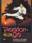 Taekwon-do - náhled